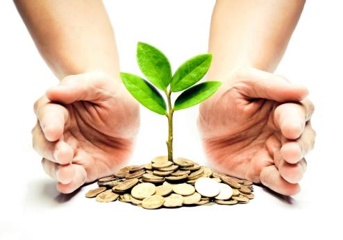 Como cuidar do seu dinheiro: 13 dicas que te ajudarão a ter uma vida financeira estável.